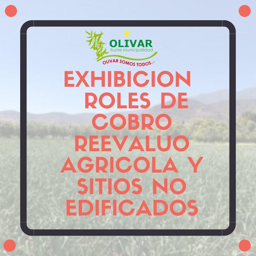 Exhibición Roles de cobro Reevalúo Agrícola y Sitios no Edificados
