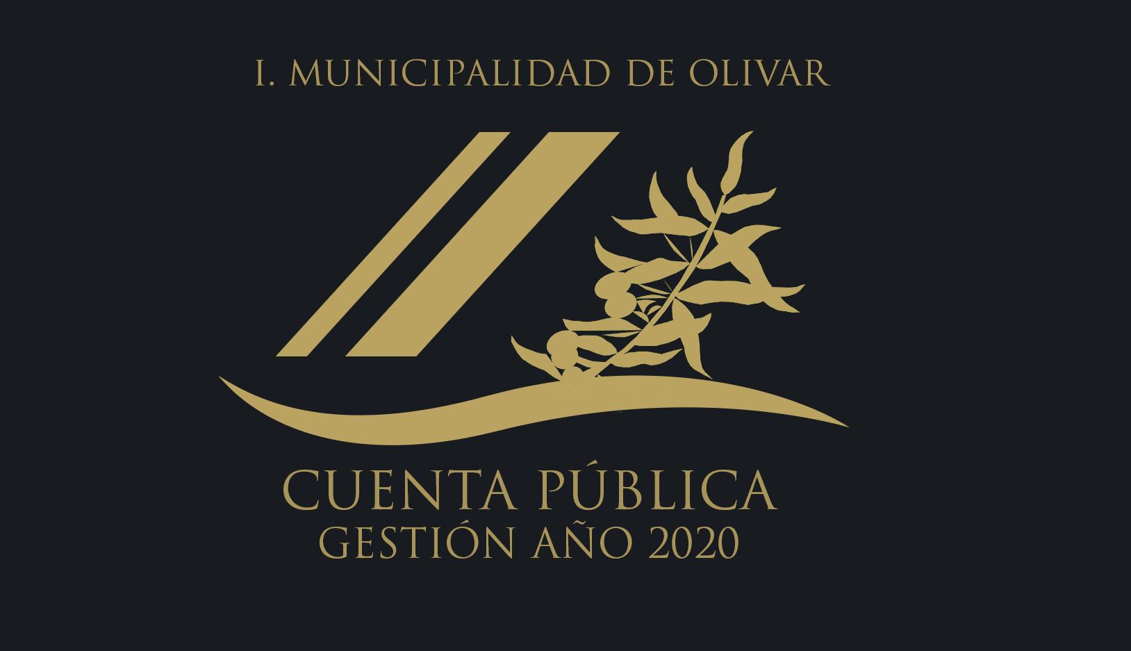 Cuenta Pública Gestión Año 2020